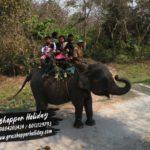 Jaldapara National  Park –  dooars tour package