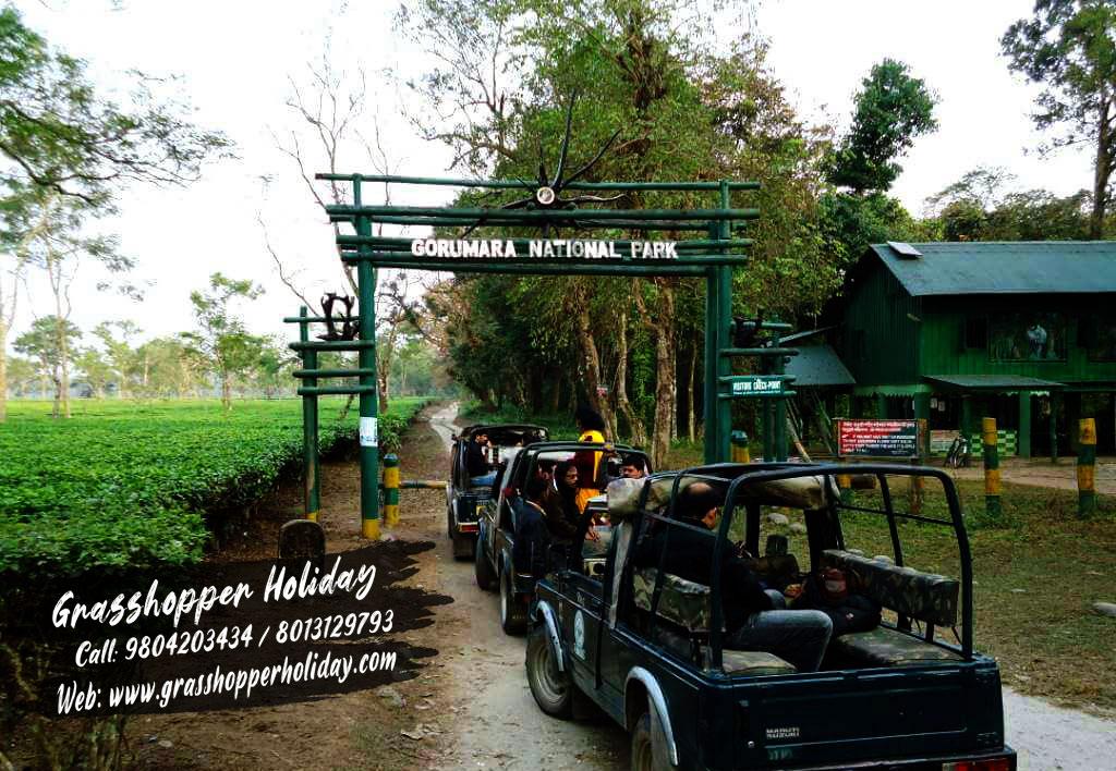 gorumara-national-park- dooars tour plan