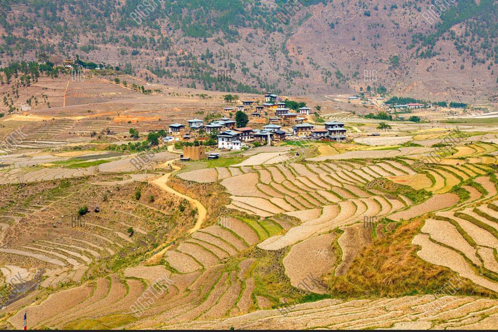 punakha Ritsha Village